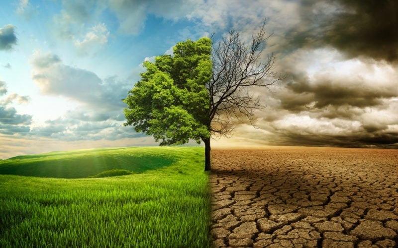 Climate change is an ethical and moral choice